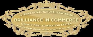Debt Elimination Program Works